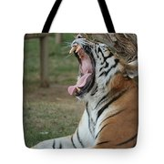 Tiger After Lunch Tote Bag