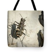 Tiger Beetle Looking For Prey On A Stone Tote Bag