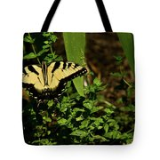 Tiger Butterfly Posing Tote Bag