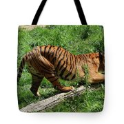 Tiger Clawed Tote Bag