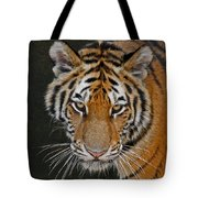 Tiger Hunting Tote Bag