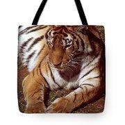 Tiger I Tote Bag