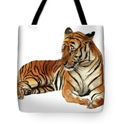Tiger In Repose Tote Bag