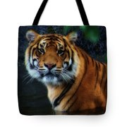 Tiger Land Tote Bag