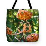 Tiger Lilies Art Prints Canvas Summer Tiger Lily Flowers Tote Bag