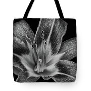 Tiger Lily - Black And White Tote Bag