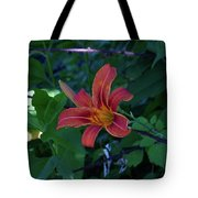 Tiger Lily In June 2018 Tote Bag