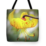 Tiger Lily. Tote Bag