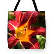 Tiger Lily0064 Tote Bag