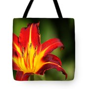 Tiger Lily0078 Tote Bag