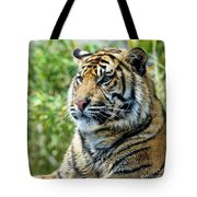 Tiger On Guard Tote Bag