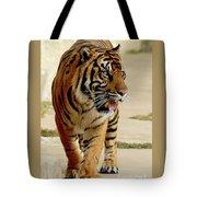 Tiger Pacing Tote Bag