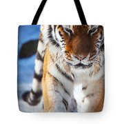 Tiger Strut Tote Bag
