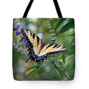Tiger Swallowtail 1 Tote Bag