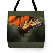 Tiger Swallowtail - 2 Tote Bag