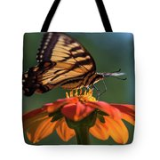Tiger Swallowtail - 3 Tote Bag