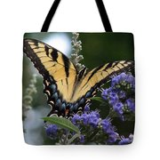 Tiger Swallowtail 3 Tote Bag