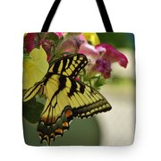 Tiger Swallowtail Butterfly On Begonia Bloom         June            Indiana Tote Bag