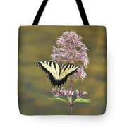 Tiger Swallowtail Butterfly On Common Milkweed 1 Tote Bag