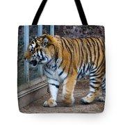 Tiger Territory 4 Tote Bag