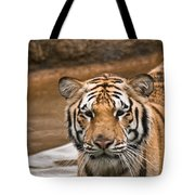 Tiger Wading Stream Tote Bag