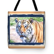 Tiger With Border Tote Bag