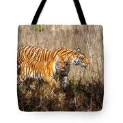 Tigers Burning Bright Tote Bag