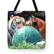 Tigers Playing Tote Bag