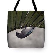 Tightrope Walker Bird Tote Bag