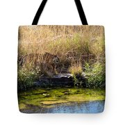 Tigress By The Stream Tote Bag