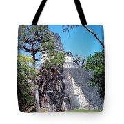 Tikal Iv Tote Bag
