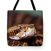 Timber Rattler Coil Tote Bag
