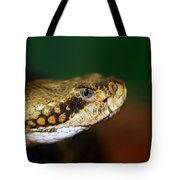 Timber Rattler Head On Tote Bag