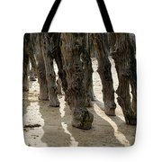 Timber Textures Lll Tote Bag