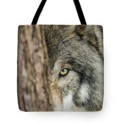 Timber Wolf Picture - Tw285 Tote Bag