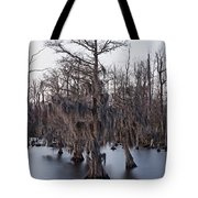 Time And Cypress Tote Bag