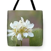 Time Tote Bag by Beauty For God