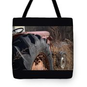 Time Beyond The Grass Tote Bag