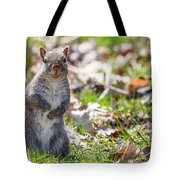 Time For Dinner? Tote Bag