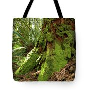 Time Lost Tote Bag