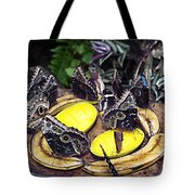 Time Out For Lunch Tote Bag
