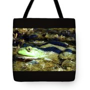 Time To Drain The Swamp Tote Bag
