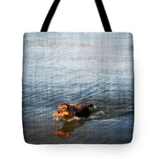 Time To Fetch Tote Bag by Joan  Minchak