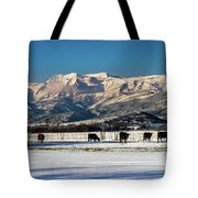 Timpanogos From The North Fields Tote Bag