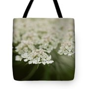 Tiny Cluster Of Queen Anne's Lace Tote Bag