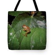 Tiny Escapee Tote Bag