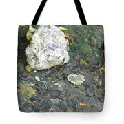 Tiny Fish In The Clear Water Tote Bag