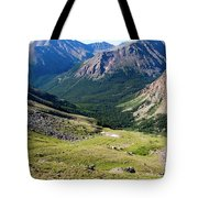 Tiny Hikers On The Mount Massive Summit Tote Bag