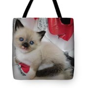 Tiny Micro Version Of Red White And Ragdoll Kitty Kitten Baby Cat Silktapestrykittenstm Tote Bag