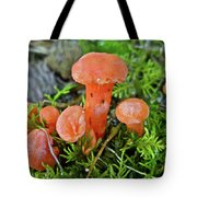 Tiny Orange Mushrooms In Moss Tote Bag